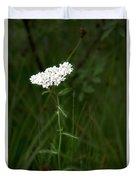 Alpine Yarrow Wildflower 2 Duvet Cover