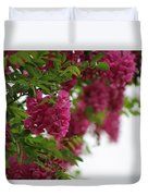 Amaranth Pink Flowering Locust Tree In Spring Rain Duvet Cover