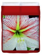 Amaryllis Beauty Duvet Cover