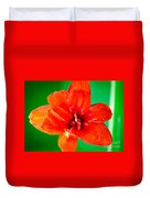 Amaryllis Contrast Orange Amaryllis Flower Appearing To Float Above A Deep Green Background Duvet Cover