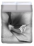 Amaryllis Flower Bloom In Black And White Duvet Cover