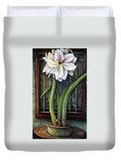 Amaryllis In The Window Duvet Cover