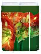 Amaryllis Triptych Duvet Cover