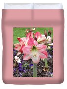 Amazing Amaryllis - Pink And White Apple Blossom Hippeastrum Hybrid Duvet Cover