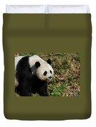 Amazing Giant Panda Bear Sitting In A Grass Field Duvet Cover
