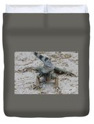 Amazing Iguana With A Striped Tail On A Beach Duvet Cover