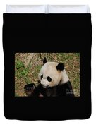 Amazing Panda Bear Holding On To Shoots Of Bamboo Duvet Cover