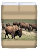 American Bison 5 Duvet Cover by James Sage