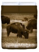 American Bison Grazing - Bw Duvet Cover