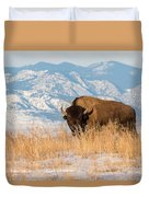 American Bison In Front Of The Rocky Mountains Duvet Cover
