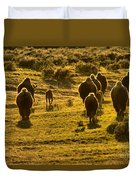 American Bison Sunset March Duvet Cover