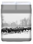 American Buffalo #2 Duvet Cover