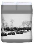 American Buffalo #3 Duvet Cover