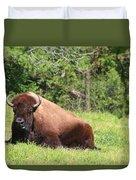 American Buffalo Duvet Cover