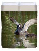 American Coot Adult And Juvenile Duvet Cover