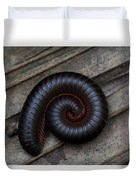 American Giant Millipede Duvet Cover by April Wietrecki Green