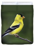 American Golden Finch Duvet Cover