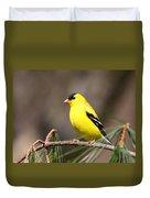American Goldfinch II Duvet Cover