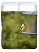 American Goldfinch No Food  Duvet Cover
