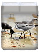 American Oyster Catcher Duvet Cover