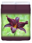 American Revolution With Vignette - Daylily Duvet Cover