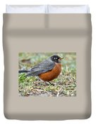 American Robin With Muddy Beak Duvet Cover
