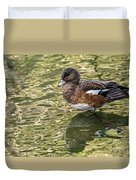 American Wigeon In Autumn Duvet Cover