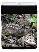 American Woodcock Chick. Duvet Cover