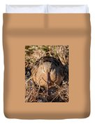American Woodcock Head On Duvet Cover