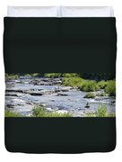 Ammonoosuc Sculptures Duvet Cover