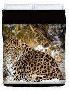 Amur Leopard In A Snowy Forrest Duvet Cover