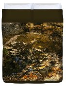 An Abstract Fall Reflection Duvet Cover