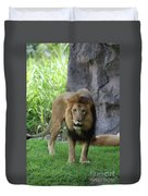 An Amazing Look At A Prowling Lion Standing In Grass Duvet Cover