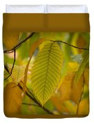 An American Chestnut Tree Castanea Duvet Cover