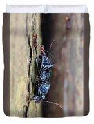 An Ant's Haul Duvet Cover