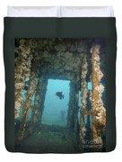 An Atlantic Spadefish Swims Amongst Duvet Cover