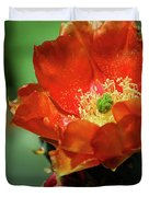 An Orange Dream  Duvet Cover