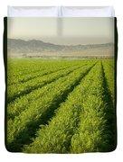 An Organic Carrot Field Duvet Cover