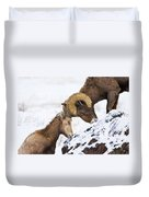 An Uphill Battle Duvet Cover