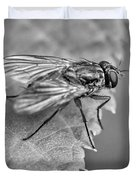 Anatomy Of A Pest - Bw Duvet Cover