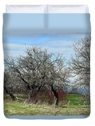 Ancient Apples Budding Out Duvet Cover
