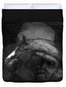 Ancient Black Horse No 1 Duvet Cover