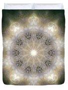 Ancient Light X Duvet Cover