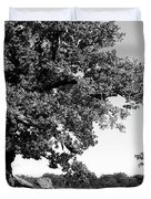 Ancient Oak, Bradgate Park Duvet Cover