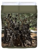 Ancient Olive Tree Duvet Cover
