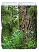 Ancient Trees Duvet Cover