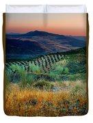 Andalucian Landscape  Duvet Cover
