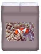 Anemone And Clown-fish Duvet Cover