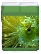 Anemone Shrimp2 Duvet Cover