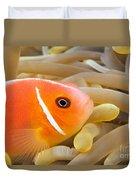 Anemonefish Duvet Cover
